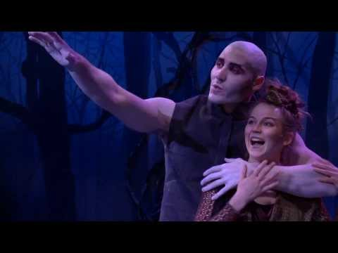 'A Midsummer Night's Dream' in Different Looks and Cities