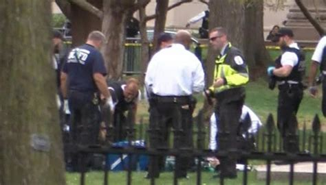 Man sets himself on fire in front of the White House | Newshub