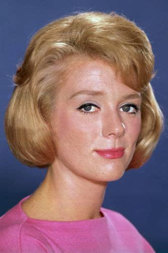 Inger Stevens | Biography, Movie Highlights and Photos